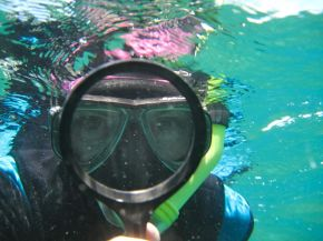 Dr Alison Jones, Great Keppel Island 2011. Image: Cat Jones