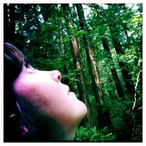 Just me and the redwoods, Muir Woods CA. Image: Cat Jones 2012